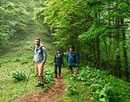 Eco Tours Japan Hiking & Walking Tours in Yamanashi Japan, the Minami Alps, and Mt. Fuji World Heritage Area